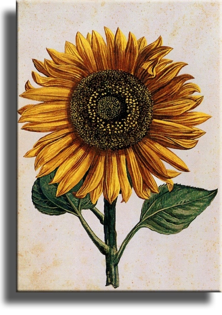 Bqir Unique Sunflower Wall Art – Wall Decoration Ideas In Latest Sunflower Wall Art (View 8 of 15)