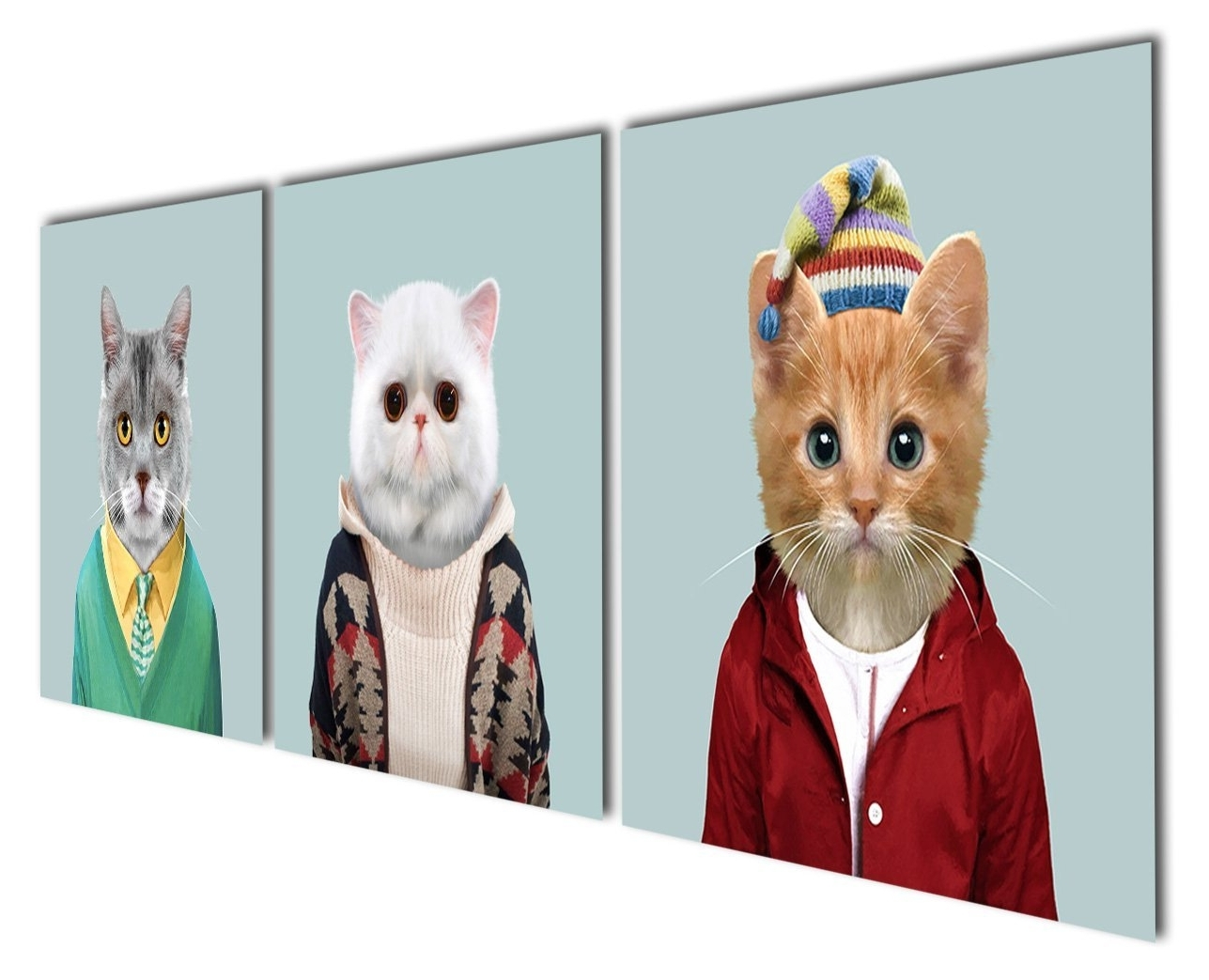 Cat Canvas Wall Art Intended For 2018 Animal World Series 6 White Grey And Yellow Cats Canvas Prints (View 9 of 15)