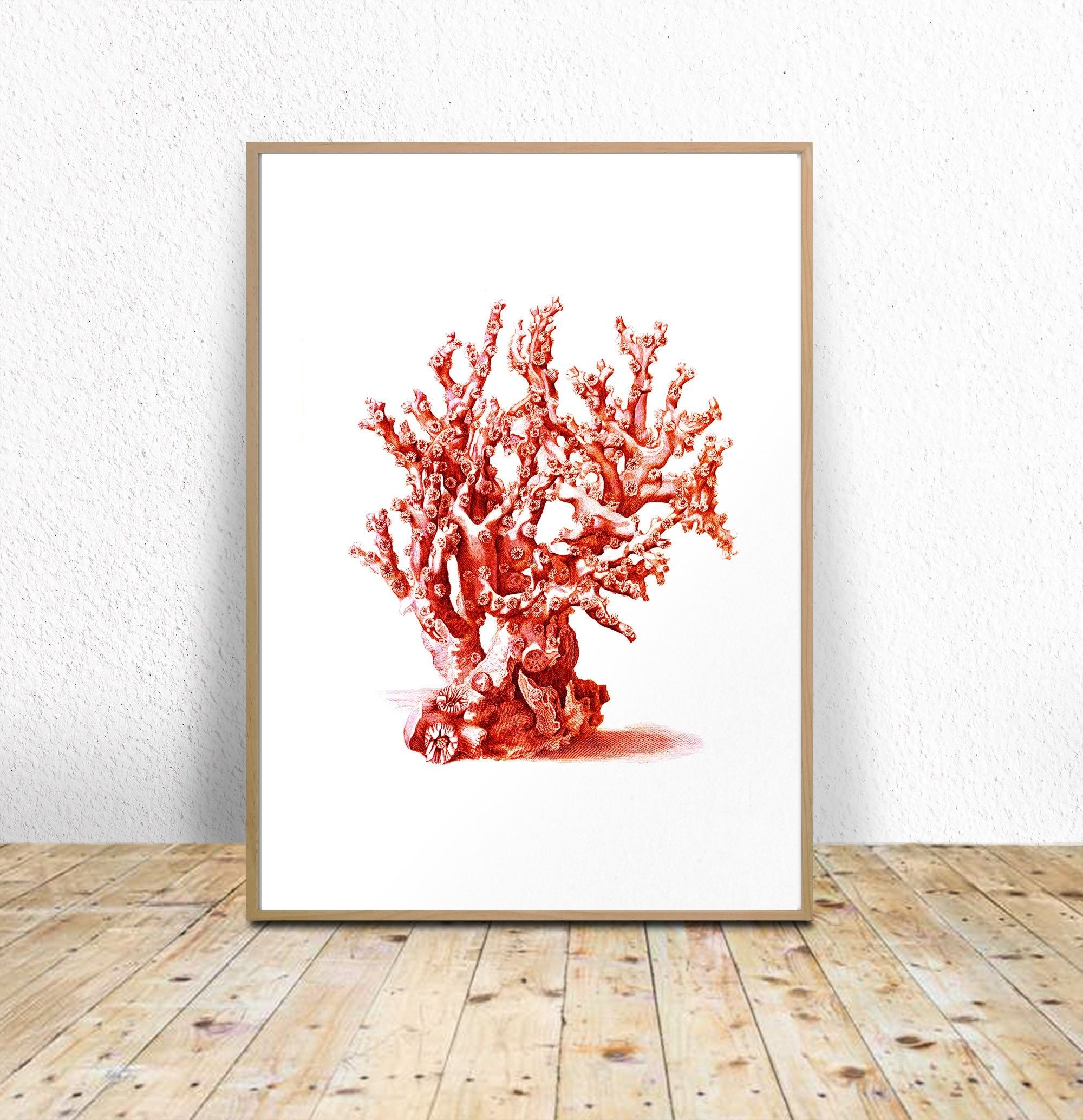 Coral Wall Art Intended For Well Known Sea Coral Printable, Red Sea Coral, Coral Wall Art, Digital Download (View 9 of 15)