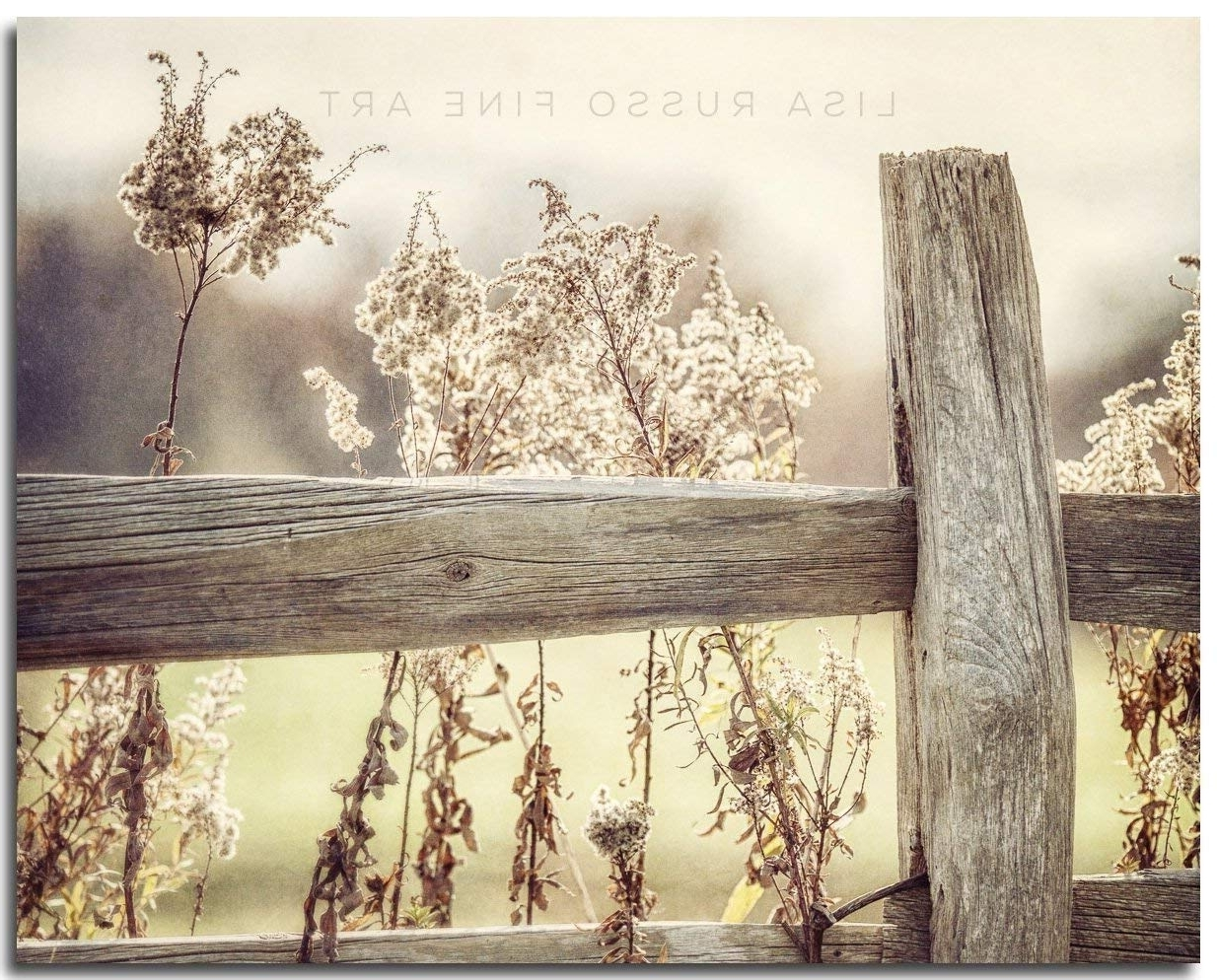 Country Wall Art With Favorite Amazon: Rustic Country Farmhouse Decor, Golden Fence Landscape (View 9 of 15)