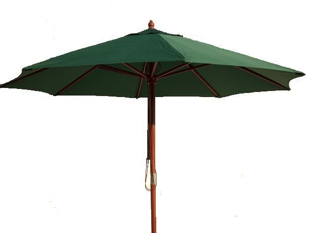 Green Patio Umbrellas In Well Known Trunk, Wood Trunk, Room Divider, Zero Gravity Chair, Hammock (Gallery 6 of 15)