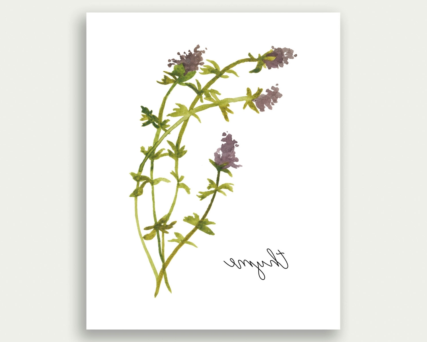 Herb Wall Art With Preferred 31 Herb Wall Art, Herb Wall Art Etsy – Swinkimorskie (View 4 of 15)