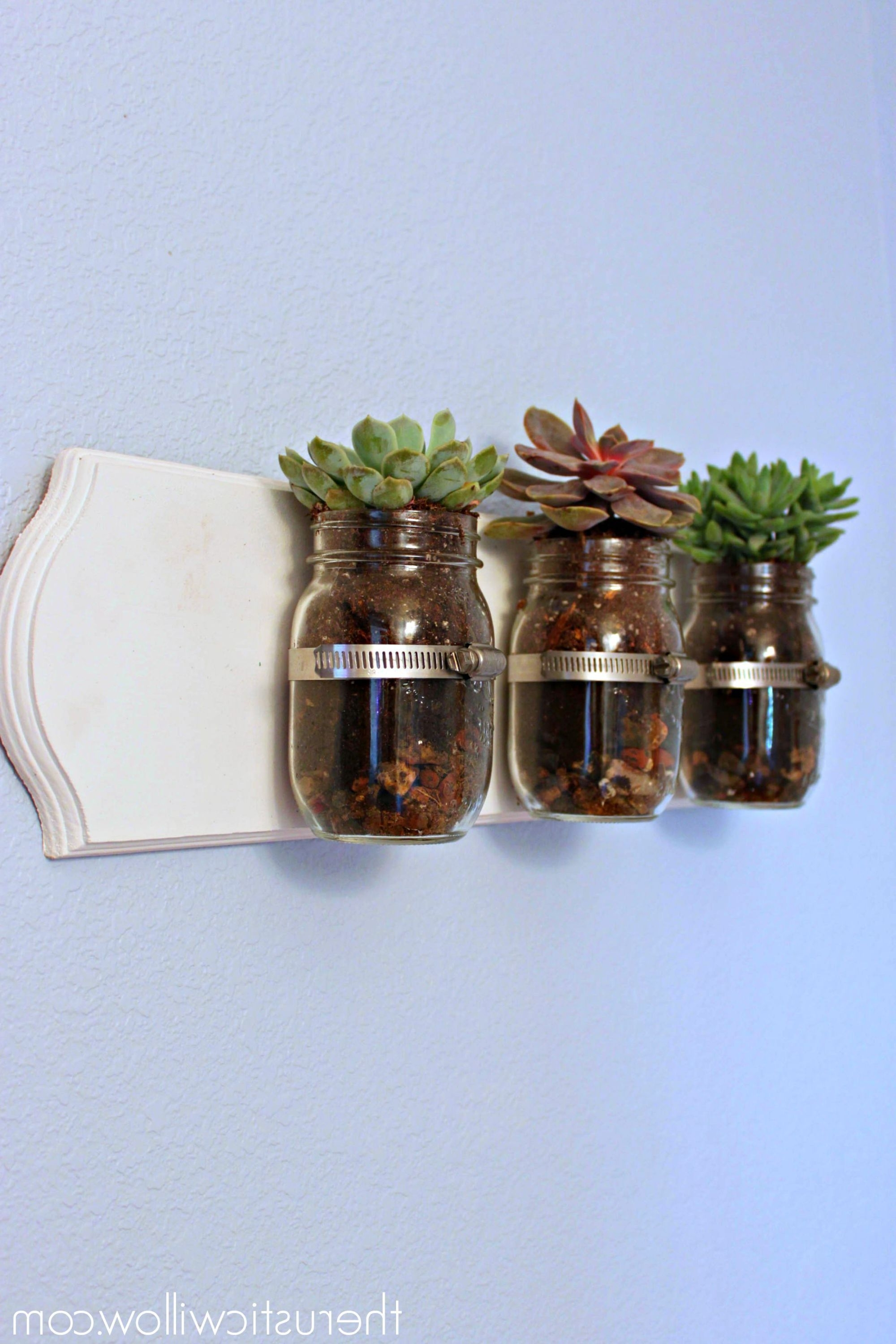 Jar, Succulent Wall And Walls Within Most Popular Mason Jar Wall Art (Gallery 7 of 15)