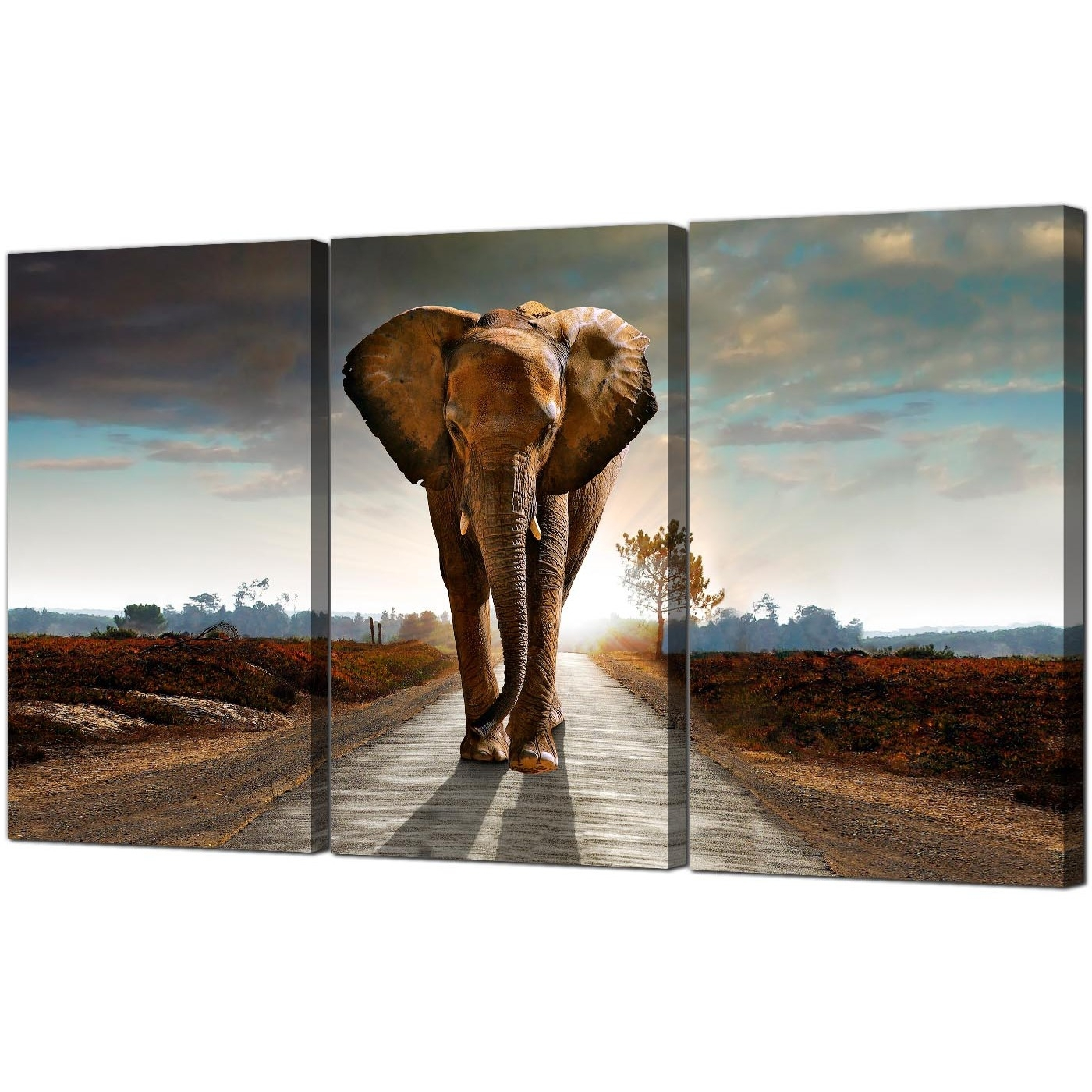 Large African Elephant Canvas Prints 3 Part For Your Hallway Throughout Fashionable Animal Canvas Wall Art (View 2 of 15)