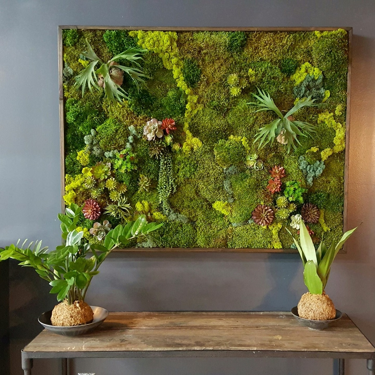 Moss Wall Art For 2017 Your Questions About Moss Walls Answered (View 6 of 15)