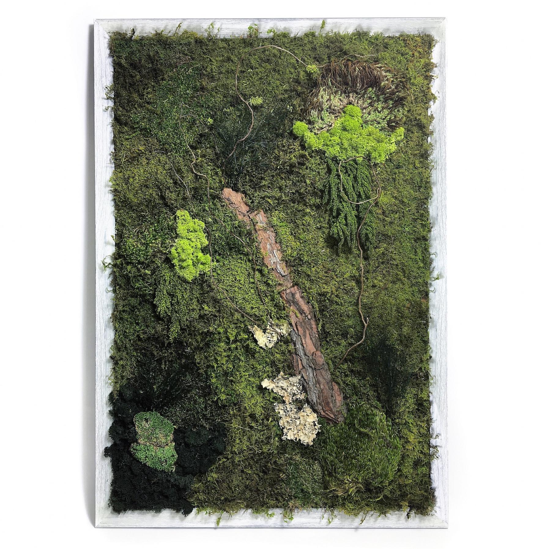 Featured Photo of Moss Wall Art