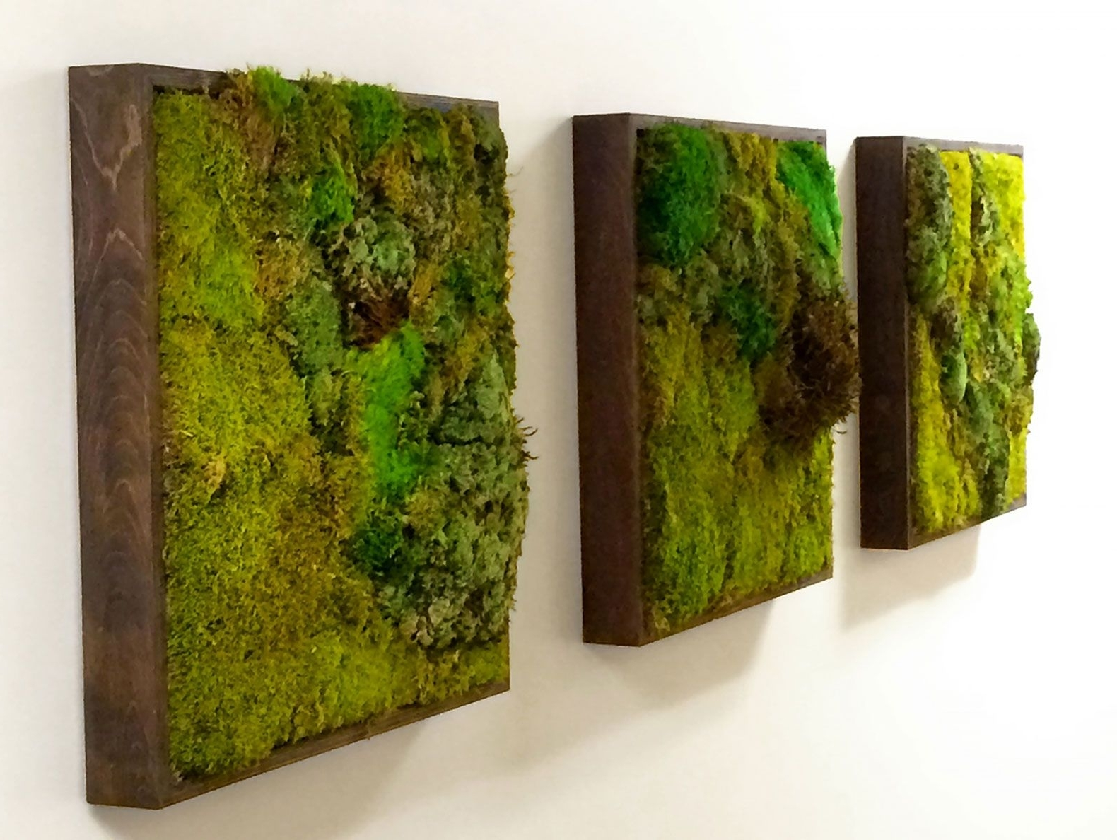 Moss Walls: The Newest Trend In Biophilic Interiors (View 5 of 15)
