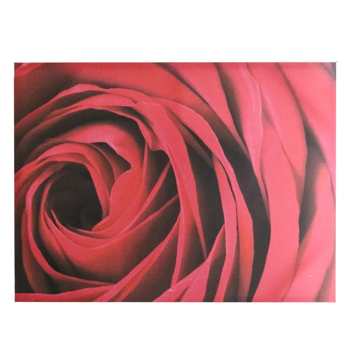 Most Current Red Rose Canvas Wall Art (View 4 of 15)