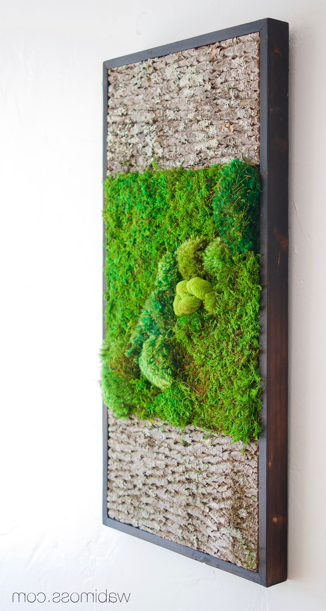 Most Popular Bark And Moss Wall Art 36X18 – Wabimoss In Moss Wall Art (View 6 of 15)
