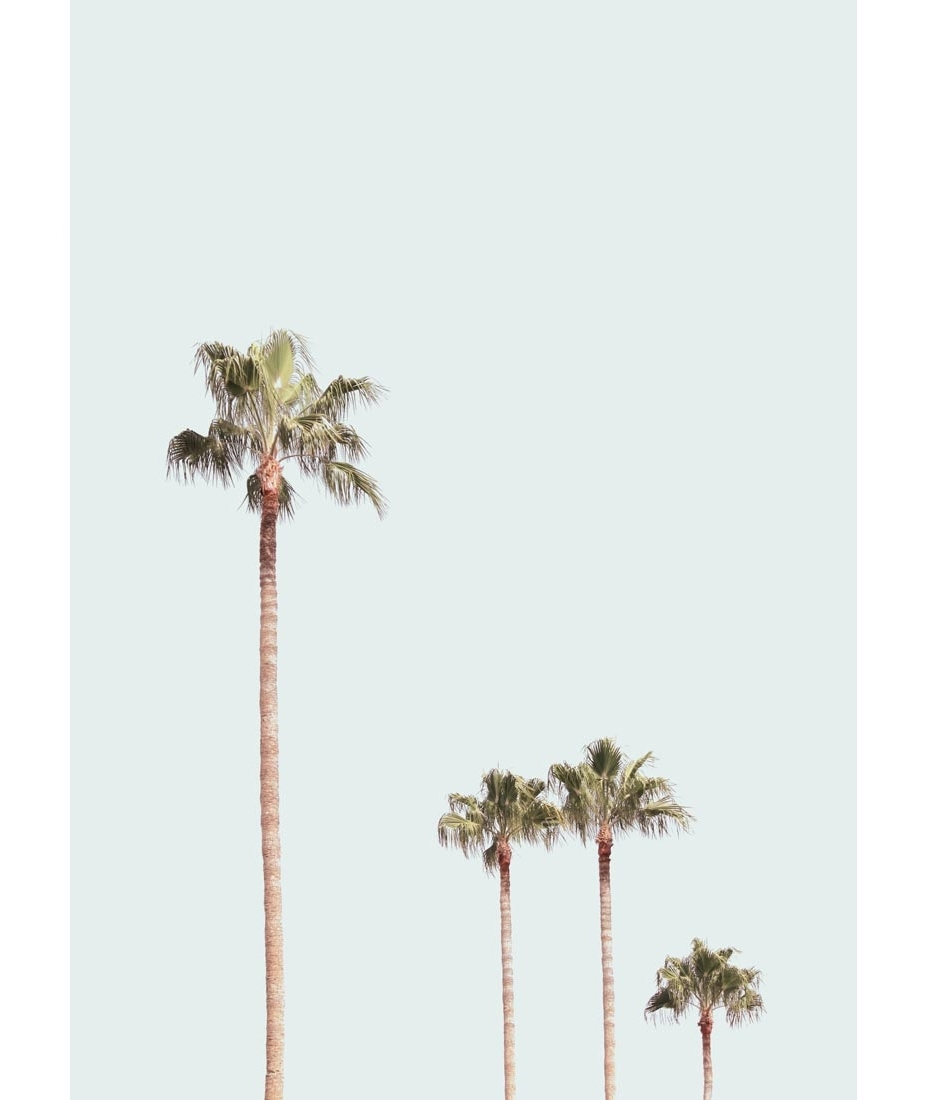 Most Up To Date Palm Tree Wall Art Inside Palm Tree Meta Contemporary Art Palm Tree Wall Art – Prix Dalle (View 6 of 15)