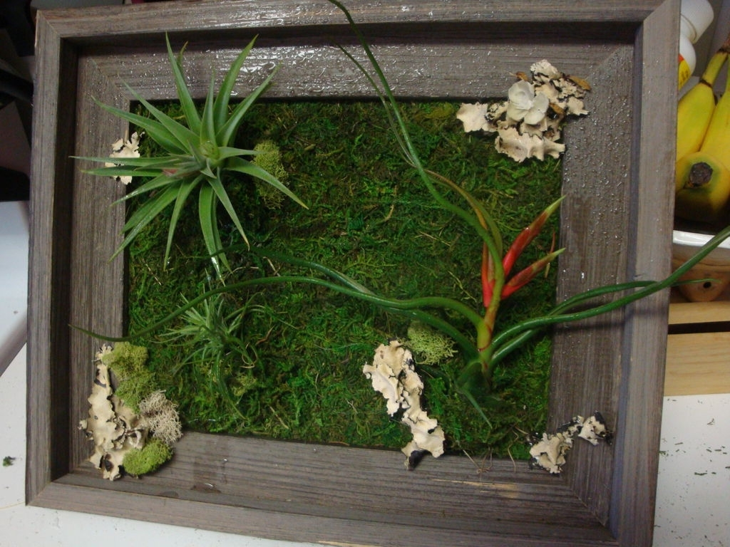 Newest Living Wall Art: 3 Steps (With Pictures) pertaining to Living Wall Art