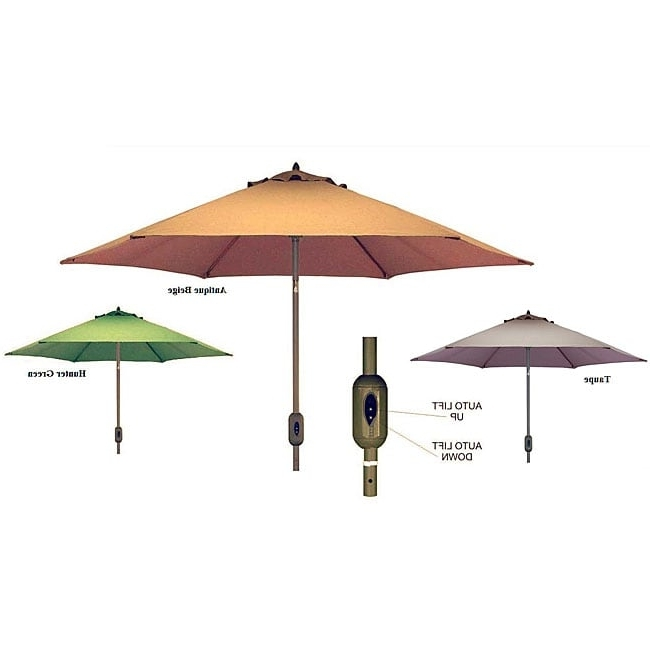 Patio Umbrellas With Sunbrella Fabric Inside Well Liked Shop Fully Automatic 9 Foot Patio Umbrella With Sunbrella Fabric (View 12 of 15)