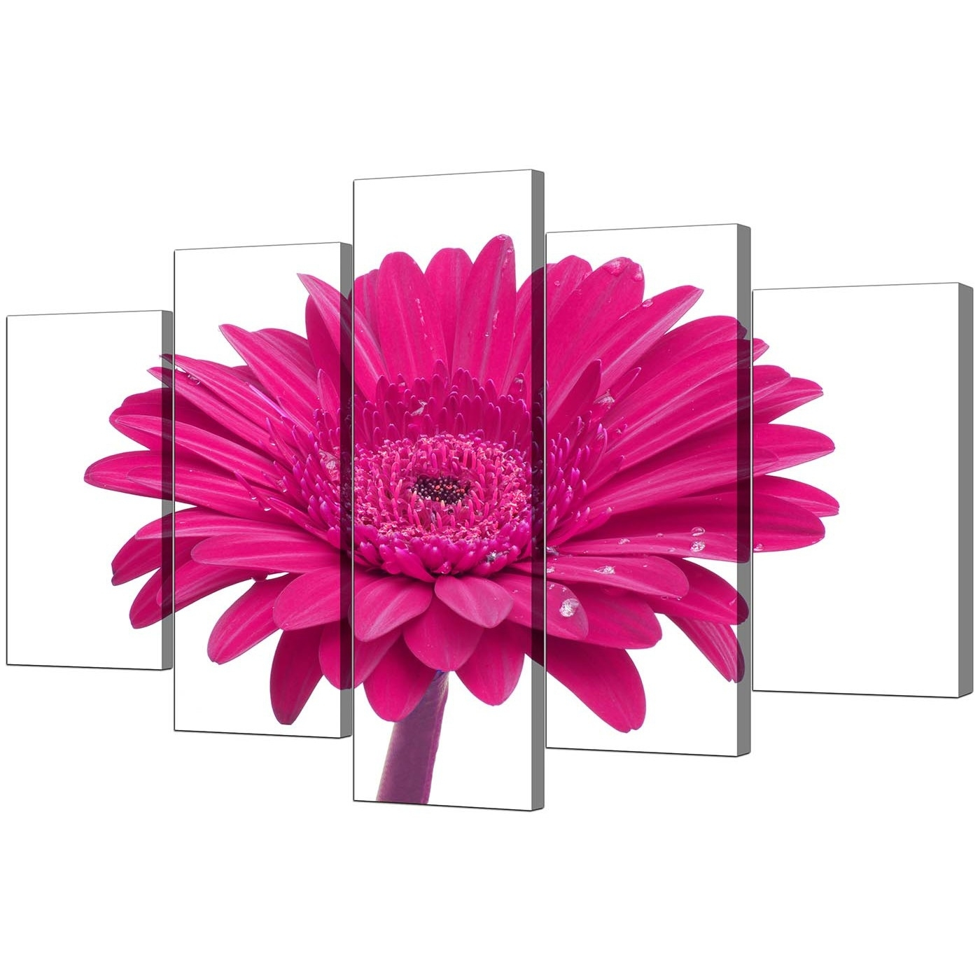 Pink Wall Art Intended For Well Liked Extra Large Flower Canvas Wall Art 5 Piece In Pink (View 13 of 15)
