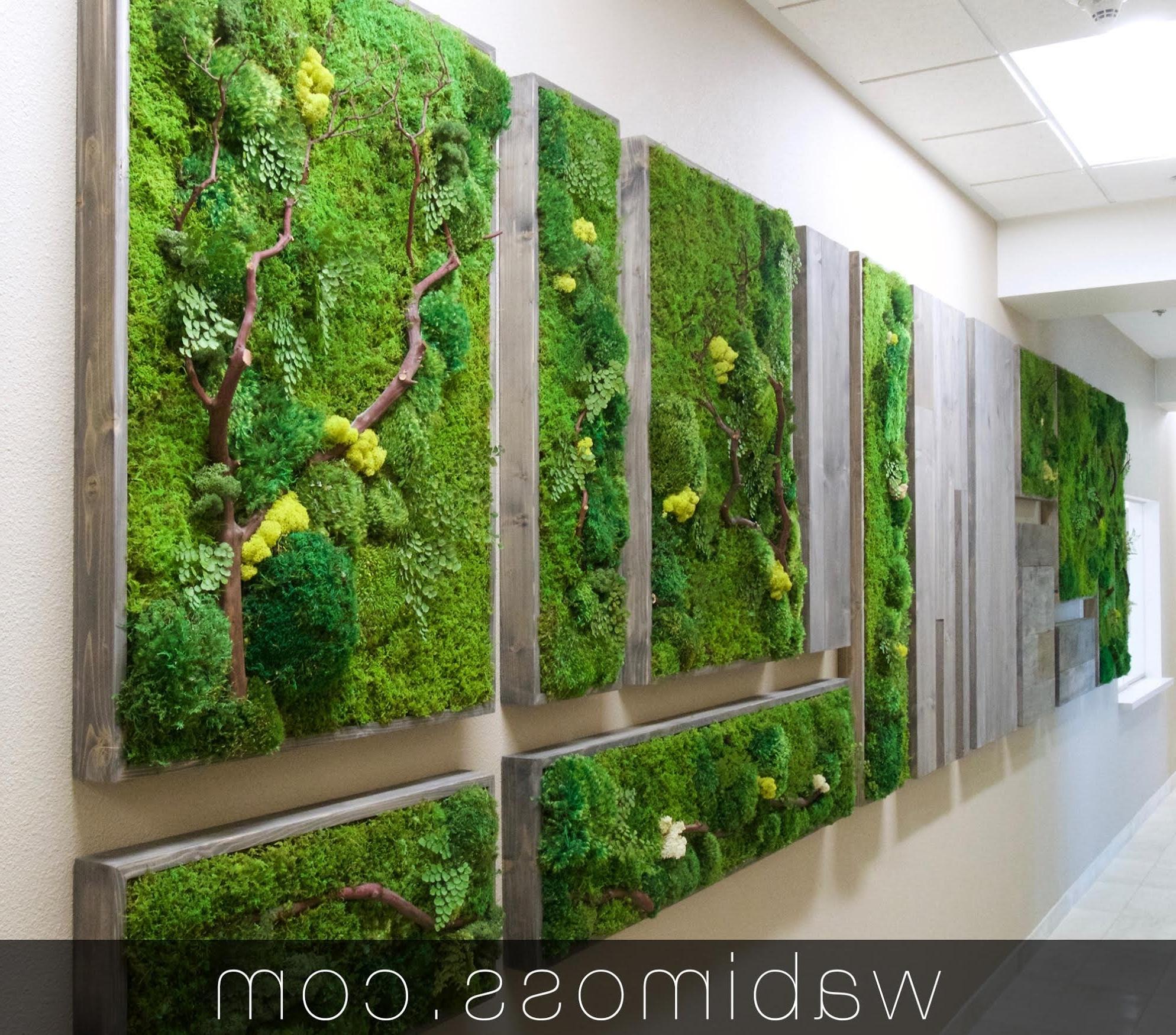 Popular Moss Wall Art With Regard To Moss Art Archives – Wabimoss (View 13 of 15)
