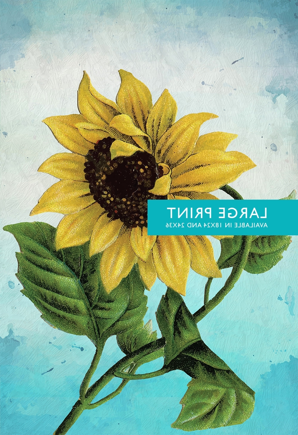 Preferred Sunflower Wall Art With Regard To Sunflower Print Set Of Two Sunflowers Art Botanical Print Flower (View 8 of 15)
