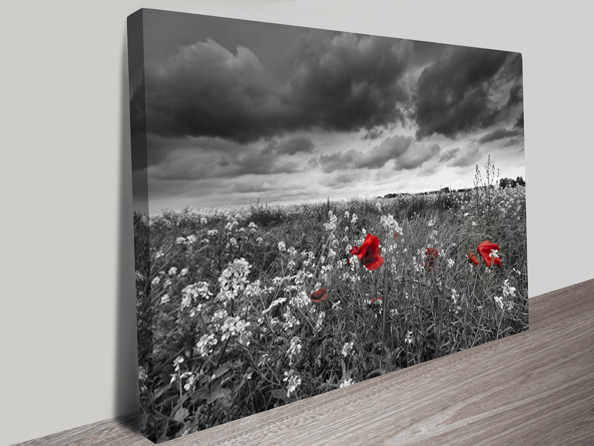 Red And Black Canvas Wall Art With Regard To Current Red Poppy Field Black And White Canvas Art (View 2 of 15)