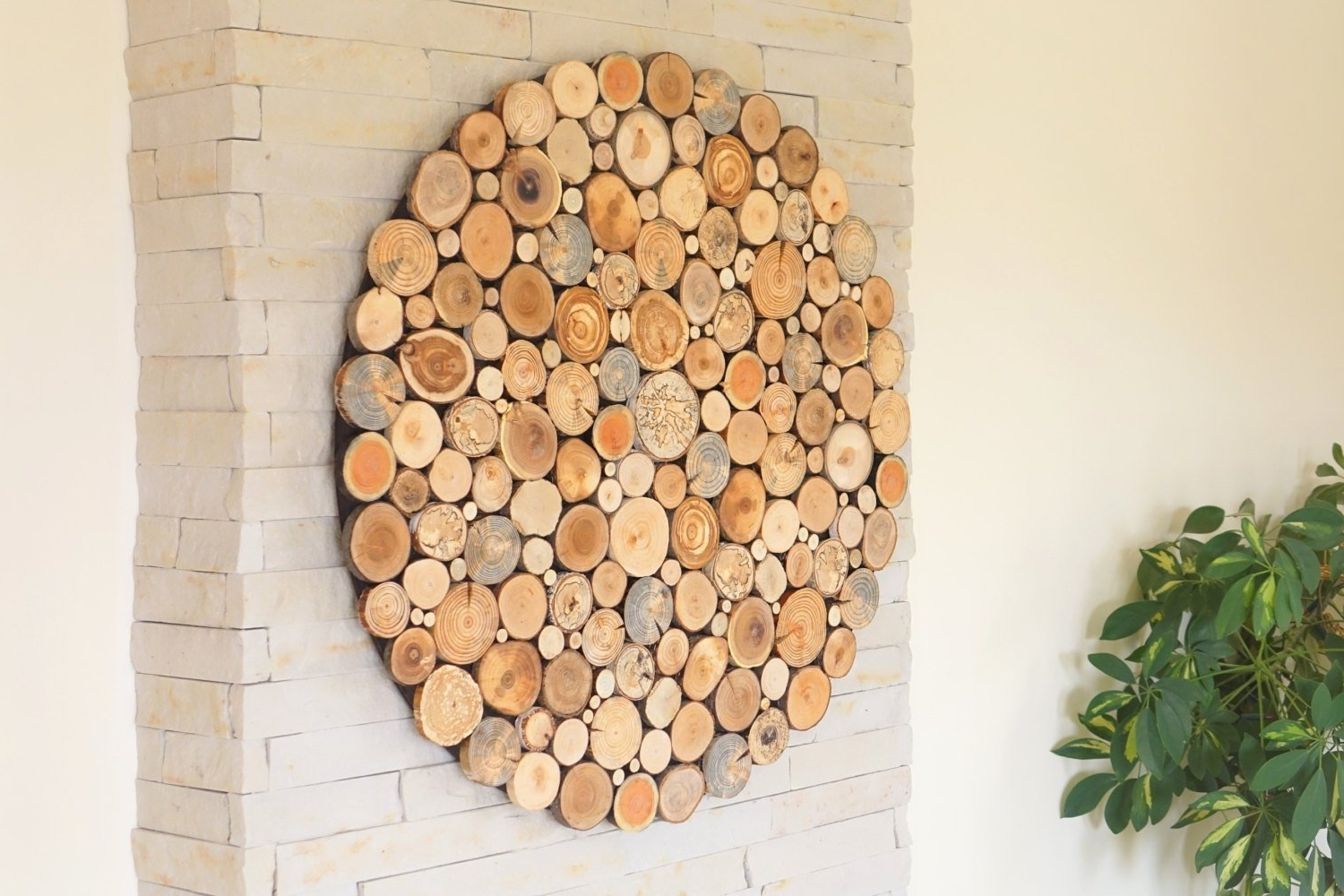 Round Wood Wall Art Regarding Trendy Round Wood Wall Art , Tree Rounds Decor, Holzwand Kunst, Tree Slices (View 2 of 15)