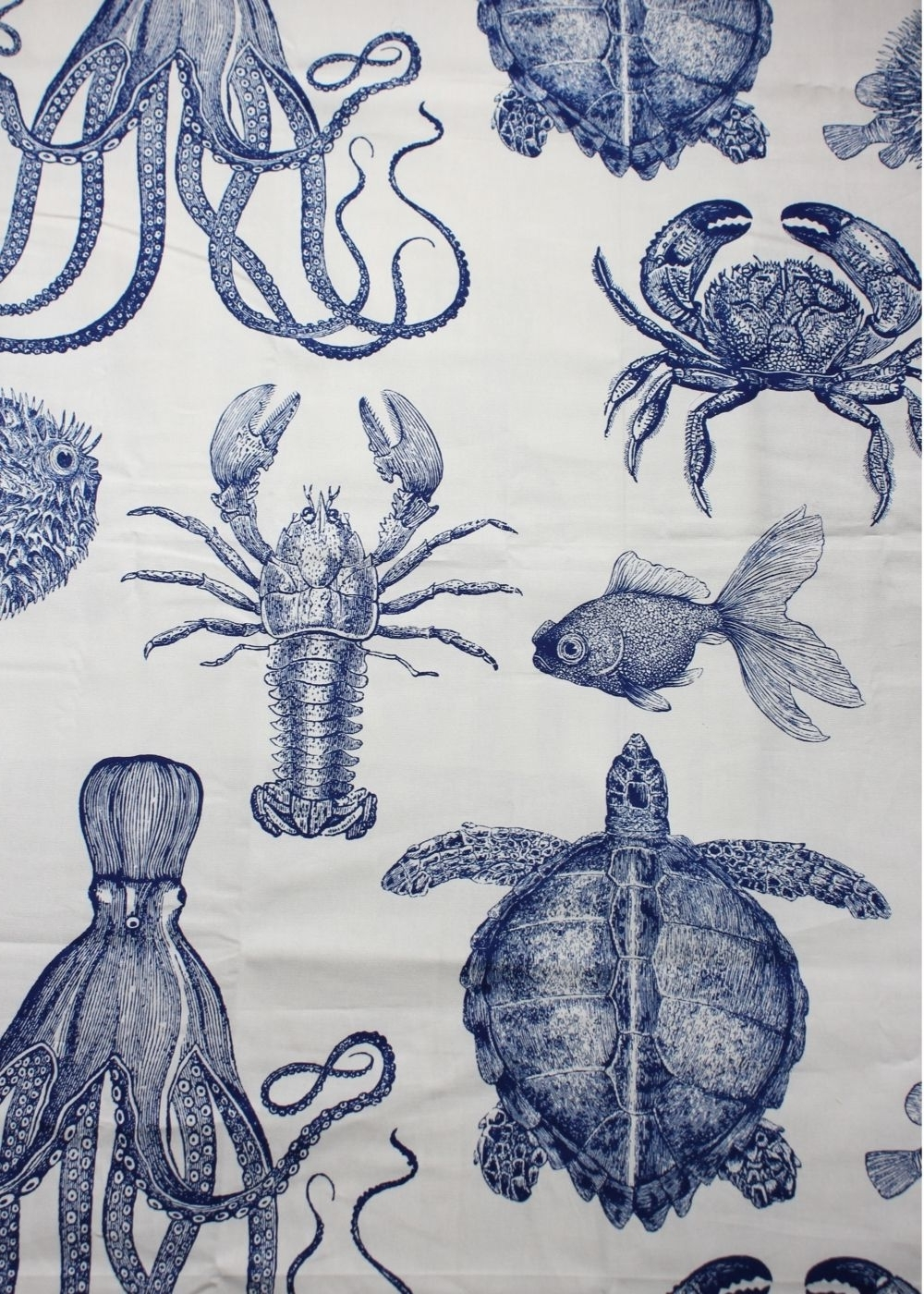 Sea Life Wall Art Throughout Favorite Diy Sea Life Pop Art – (View 2 of 15)