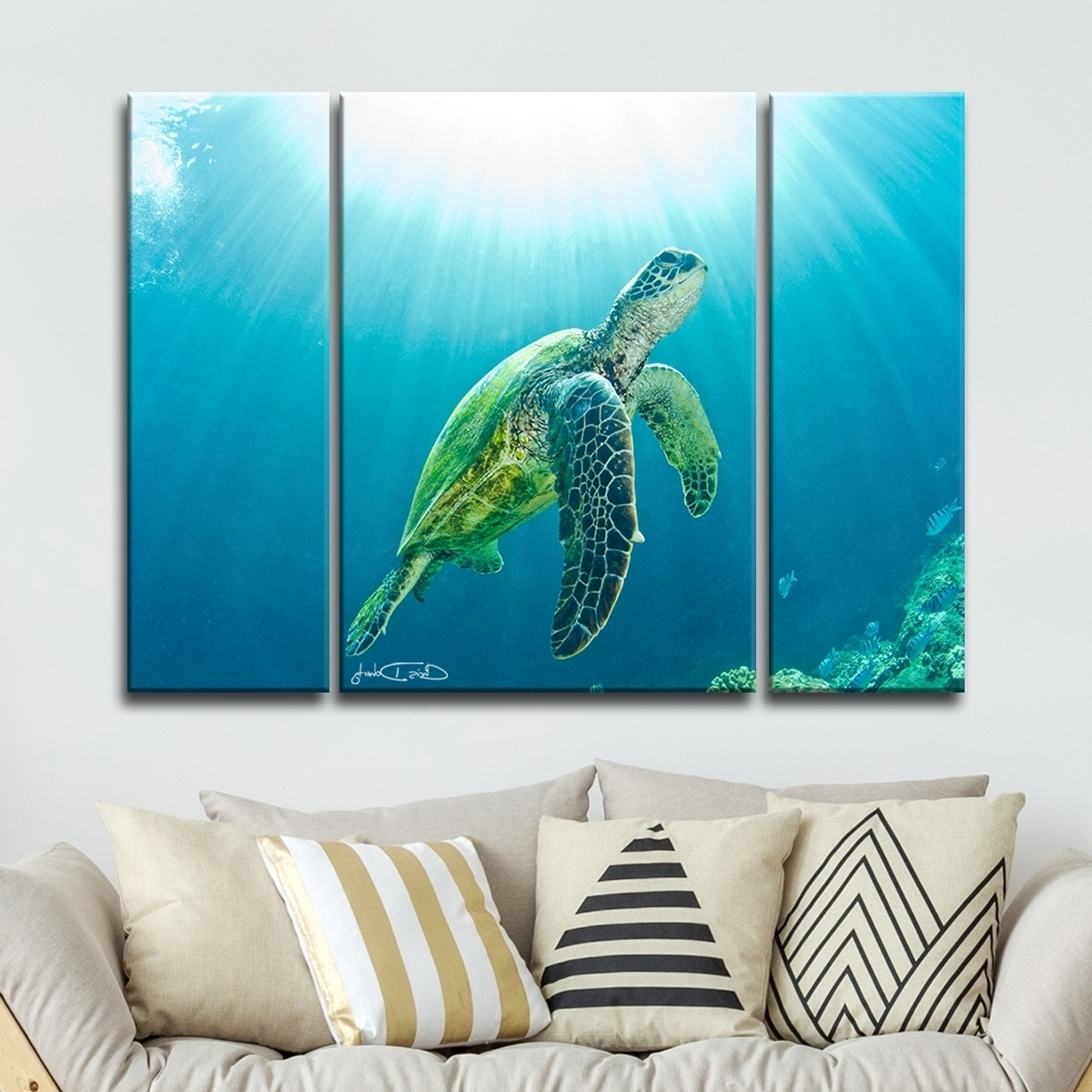 Sea Turtle Canvas Wall Art In Latest Shop Christopher Doherty 'sea Turtle' Canvas Wall Art (3 Piece (View 8 of 15)
