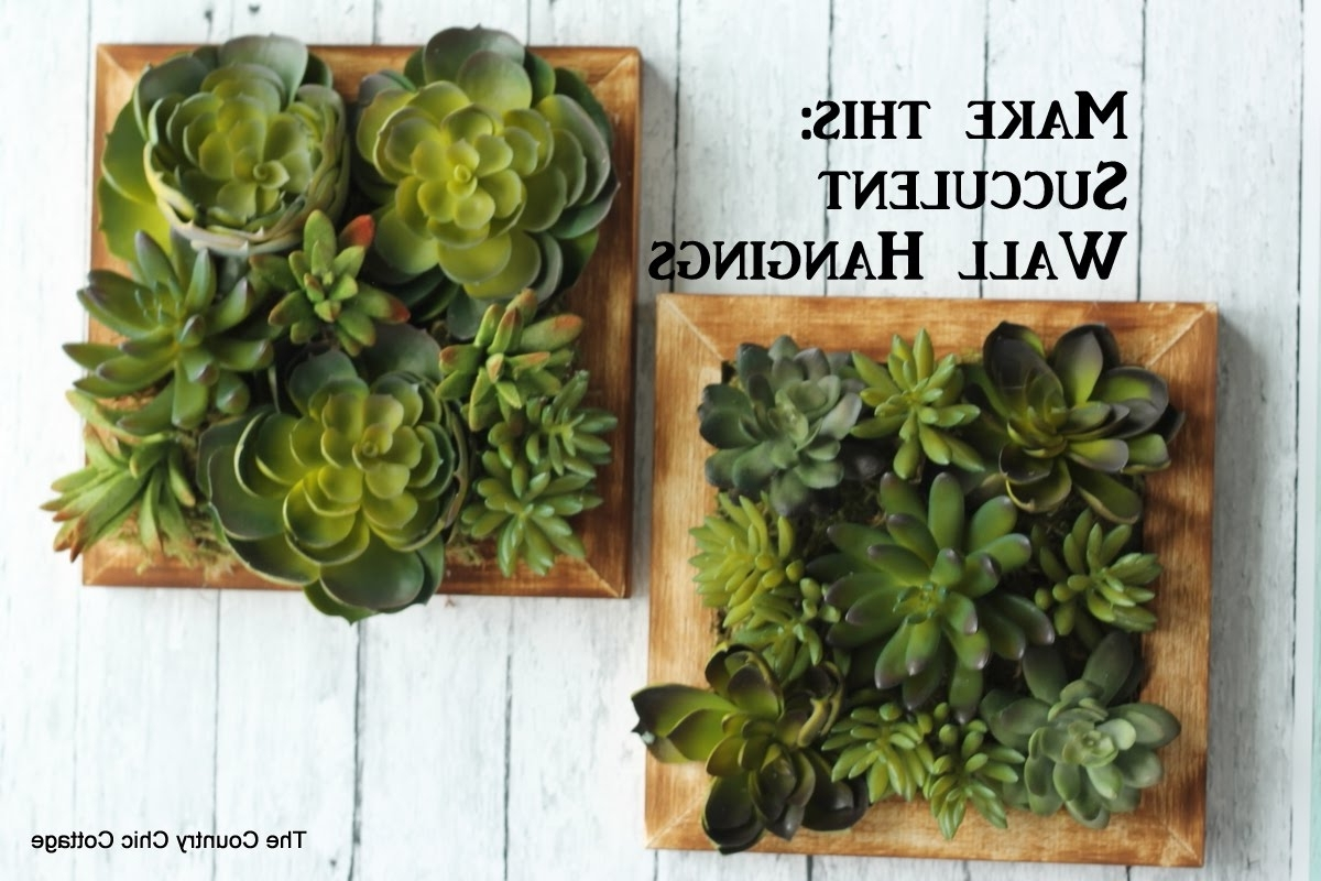 Succulent Wall Art For Well Known Faux Succulent Wall Hanging #craftsunder10Hoa – Youtube (View 4 of 15)
