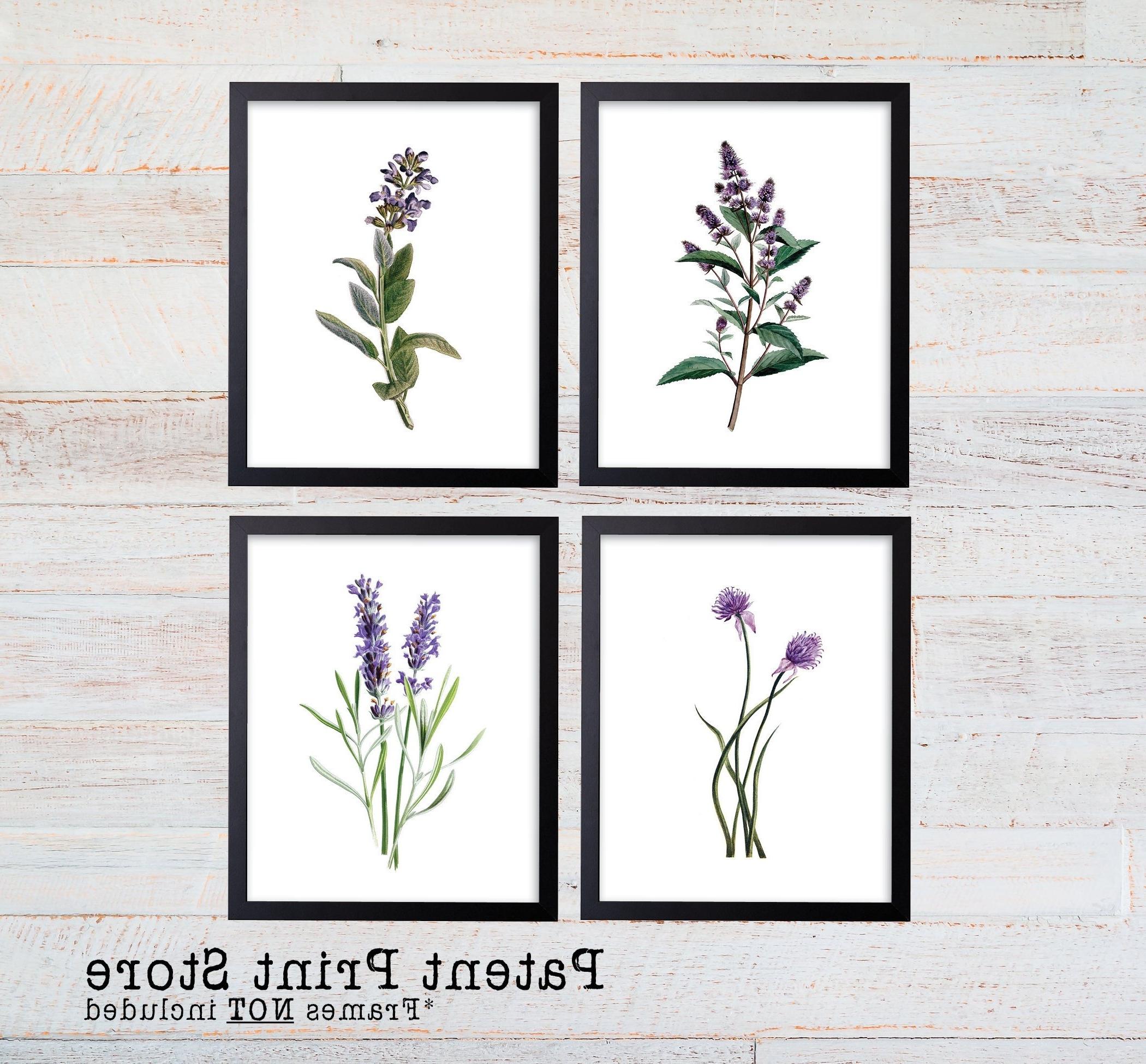 Trendy Herb Wall Art Regarding Purple Herb Botanical Art Prints. Herb Prints (View 9 of 15)