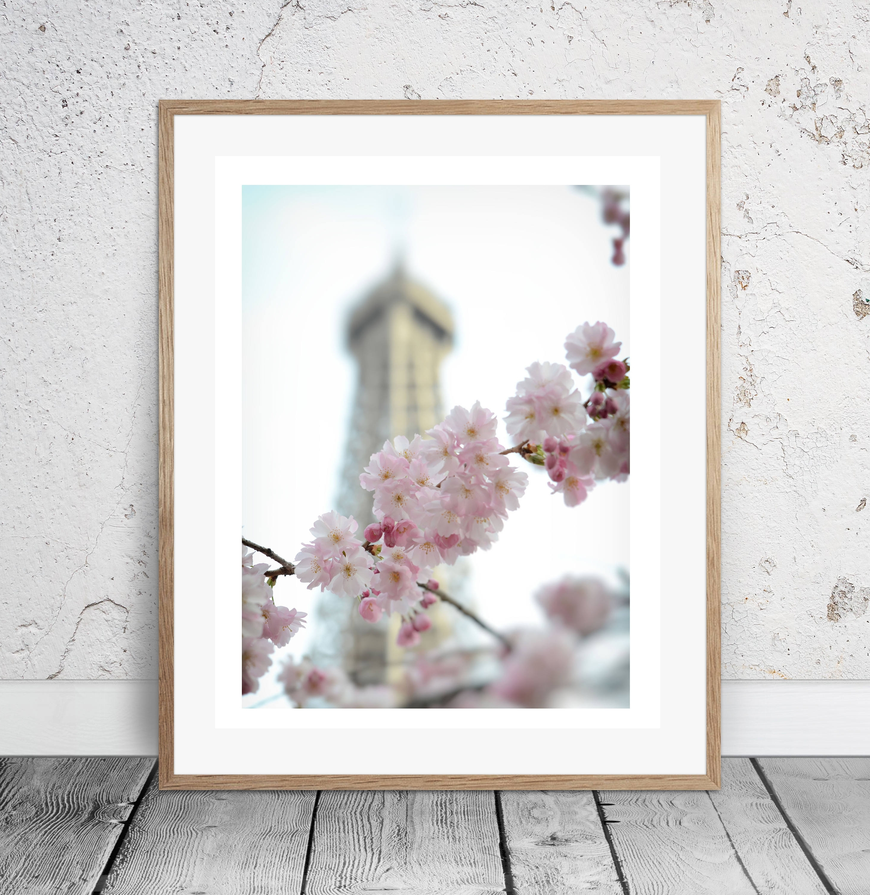Well Known Cherry Blossoms, Paris, Wall Art, Photography, Digital Download Inside Paris Wall Art (View 10 of 15)