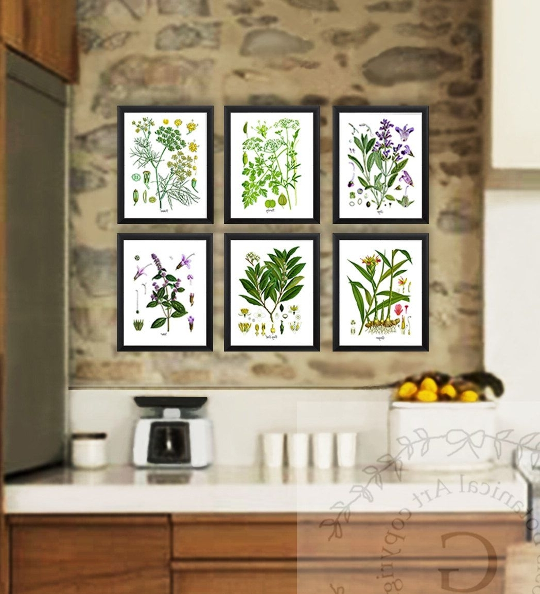 Well Liked Herb Wall Art With Kitchen Herb Botanical Prints Set Of 6 Kitchen Herbs Wall Art (View 15 of 15)