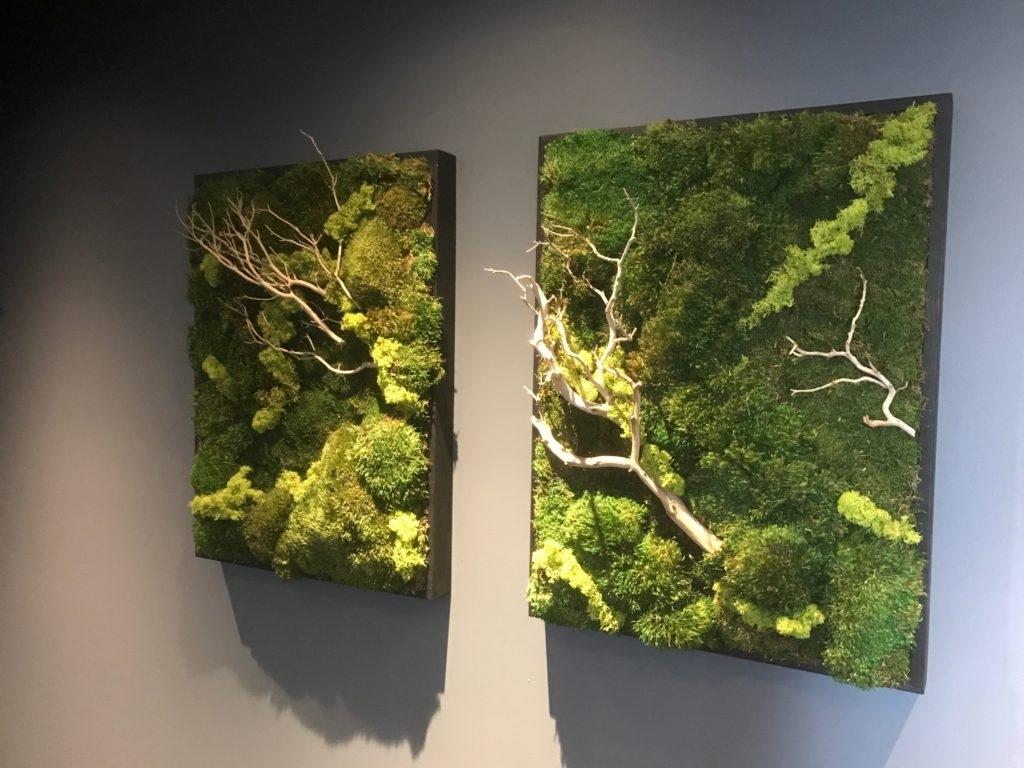 Well Liked Moss Wall Art Inside Moss Wall Art – Capid (View 14 of 15)