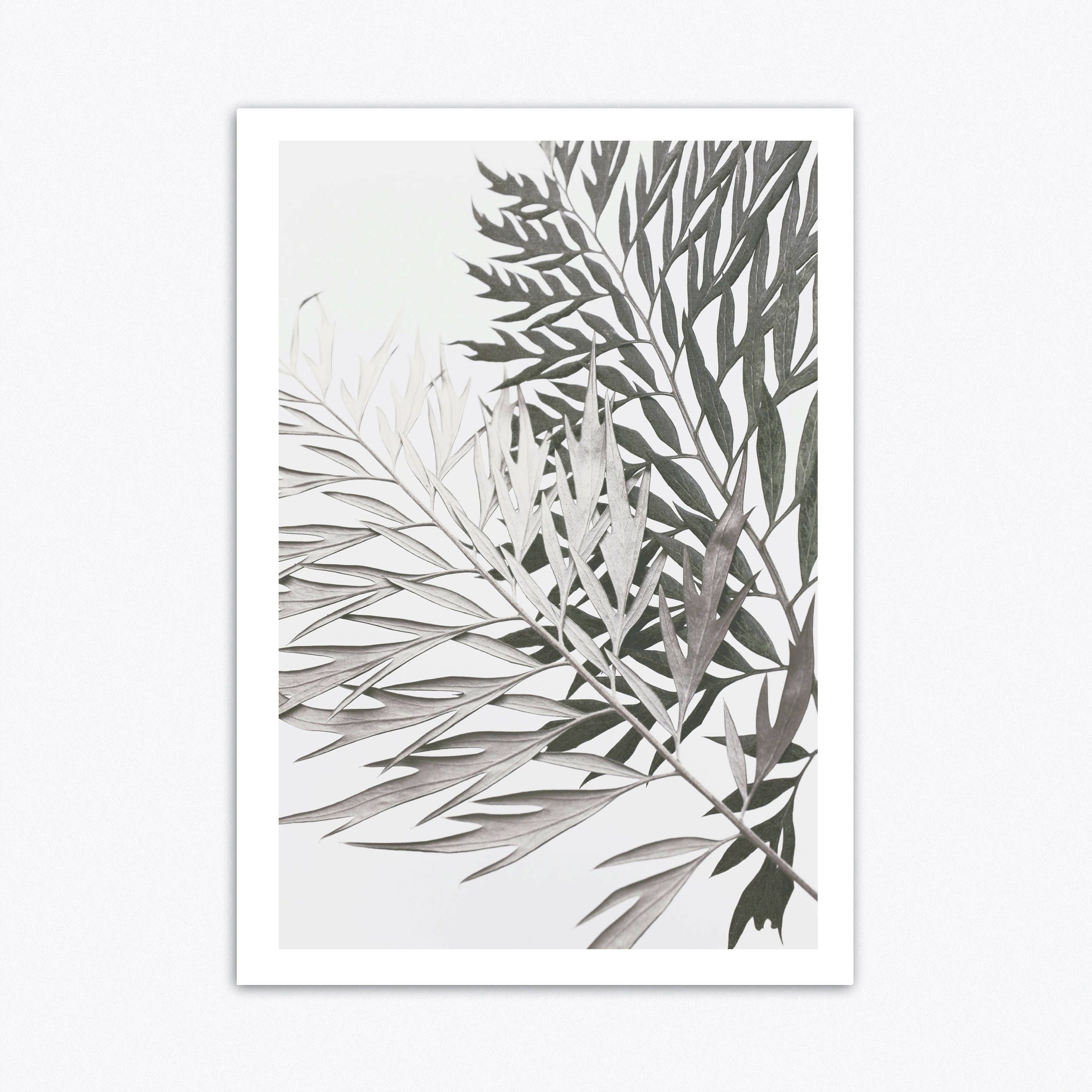 Well Liked Tropical Wall Art Pertaining To Neutral Wall Art, Tropical Wall Art, Botanical Print, Scandinavain (View 14 of 15)