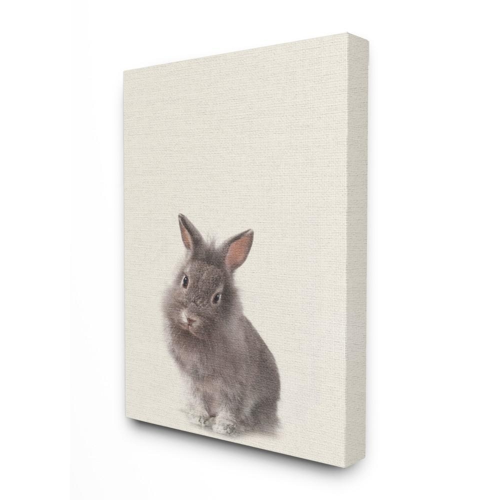 Widely Used Bunny Wall Art Pertaining To Stupell Industries 16 In. X 20 In (View 14 of 15)