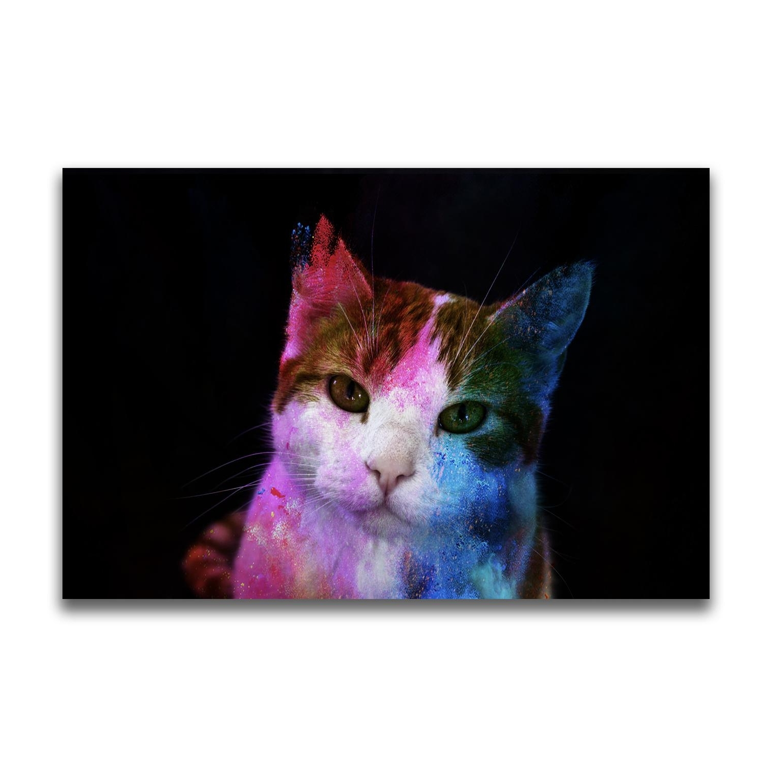 Yj Art A Colorful Cat Unframed Modern Canvas Wall Art For Home And inside Well-known Cat Canvas Wall Art