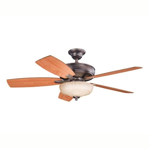 14 Degree Removable Ceiling Fan (Gallery 7 of 15)