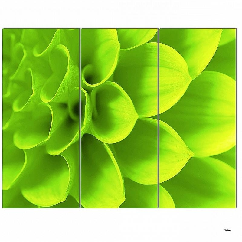 20023+ Lime Green Metal Wall Art Best Of Wall Arts Lime Green Wall Regarding Popular Lime Green Metal Wall Art (View 15 of 15)