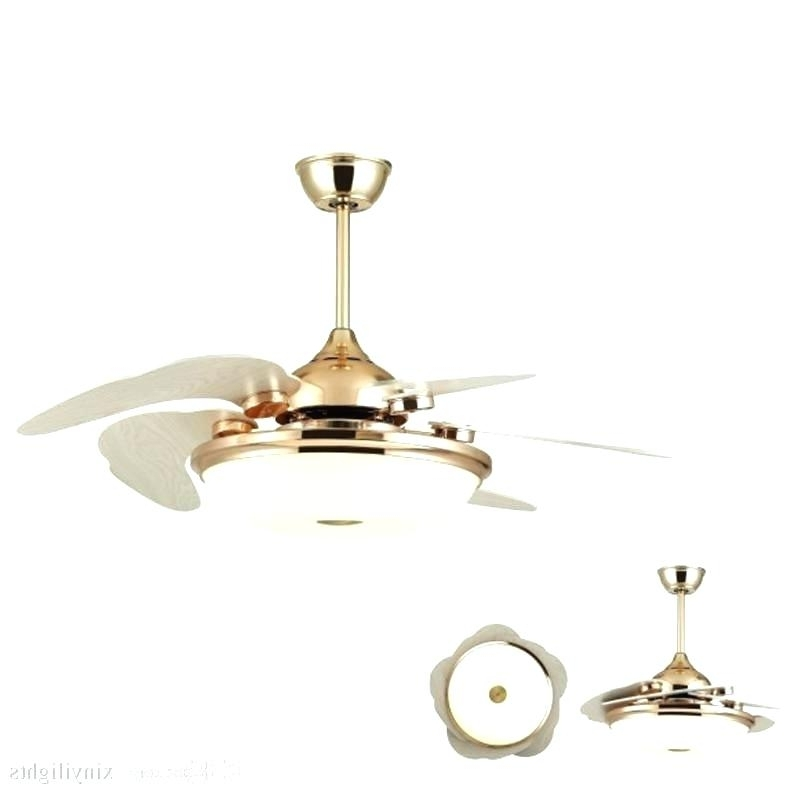 2017 Ceiling Fan Sale Medium Size Of Ceiling Fan Contemporary Helicopter Pertaining To Outdoor Ceiling Fans With Guard (View 1 of 15)