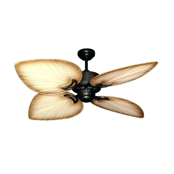 72 Predator Bronze Outdoor Ceiling Fans With Light Kit Regarding Favorite Bronze Outdoor Ceiling Fan With Light Enclosed Medium Size Of Fans (Gallery 11 of 15)