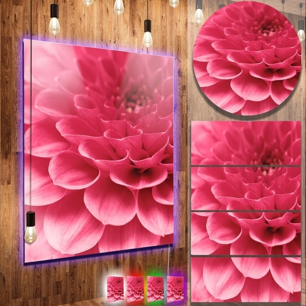Abstract Flower Metal Wall Art For Current Shop Designart 'soft Rose Abstract Flower Petals' Contemporary (View 2 of 15)