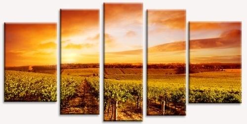 Amazon: Startonight Canvas Wall Art Vineyard At Sunset, Sunset Throughout Most Popular Vineyard Wall Art (Gallery 1 of 15)