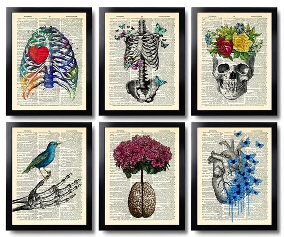 Anatomy Art Print Set 6 Medical Wall Art Anatomical Poster (View 1 of 15)