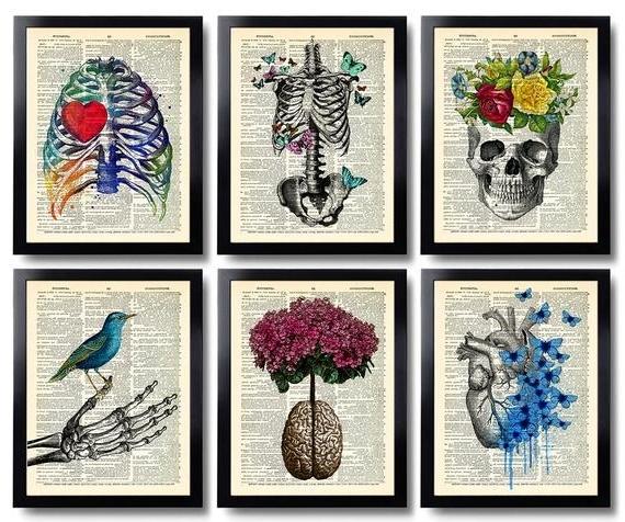 Anatomy Art Print Set 6 Medical Wall Art Anatomical Poster (View 11 of 15)