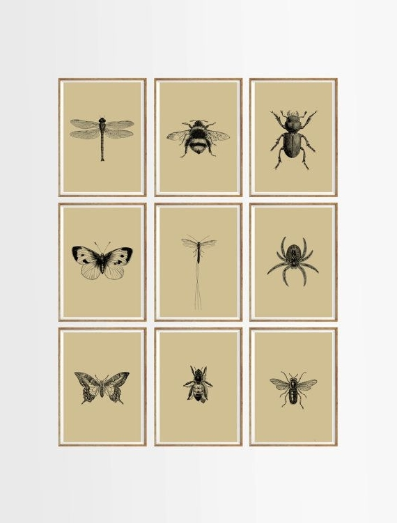 Best And Newest Bugs And Insects Art Print Set Of 9. Unframed A (View 4 of 15)