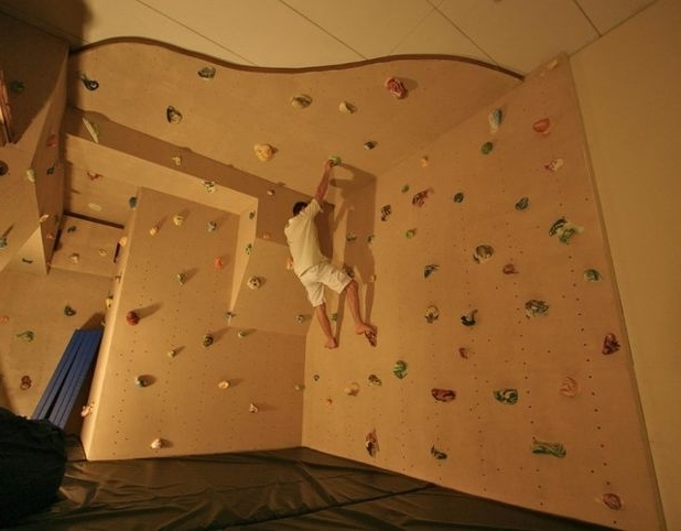 Best And Newest Fun Houzz: Could You Get To Grips With A Climbing Wall? Intended For Home Bouldering Wall Design (View 9 of 15)