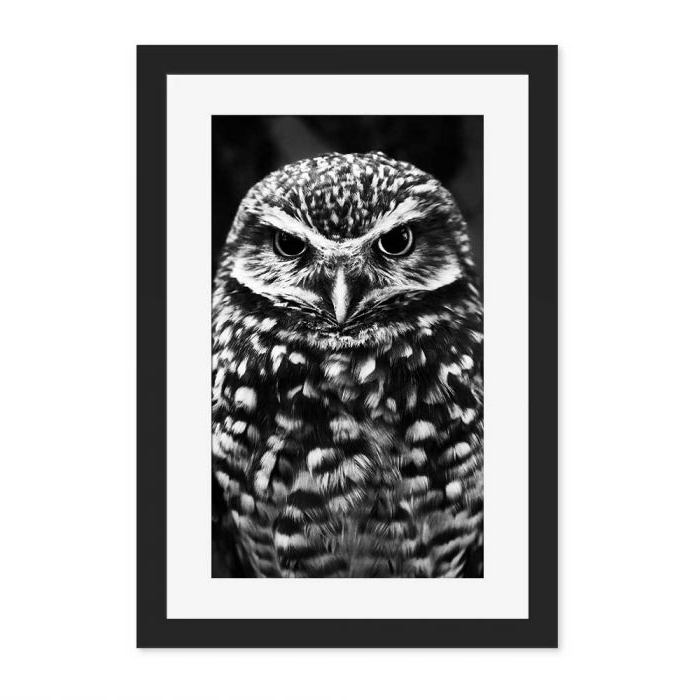 Best And Newest Owl Framed Wall Art Intended For Owl Black And White Black Framed Wall Art Print – Lovecool.co (View 4 of 15)