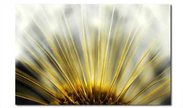 Best And Newest Yellow And Grey Abstract Wall Art Throughout Dandelion Heart Floral Abstract Wall Art Picture 30X20 Inch (View 12 of 15)