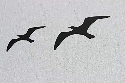 Birds In Flight Metal Wall Art With Regard To Well Known Amazon: Birds In Flight Set Of 2 Metal Wall Art: Home & Kitchen (View 5 of 15)