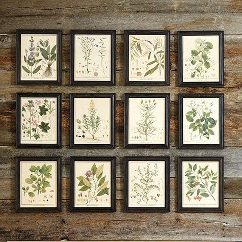 Botanical Print Sets Framed (View 15 of 15)