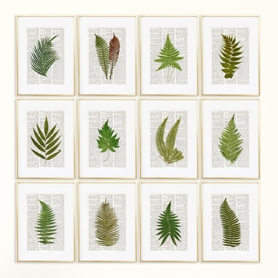 Botanical Prints Etsy Throughout Well Liked Ferns Dictionary Art Print Set Botanical Prints Fern Print (View 12 of 15)