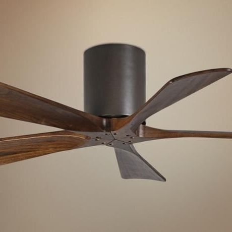 Featured Photo of Contemporary Outdoor Ceiling Fans