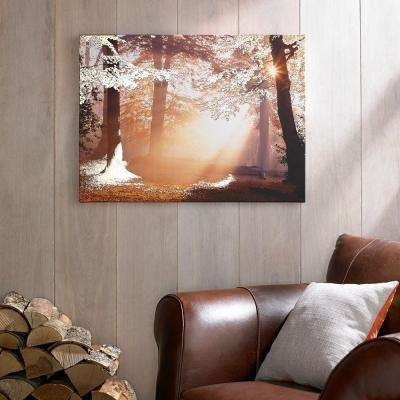 Current Graham & Brown Wall Art In Graham & Brown – Wall Art – Wall Decor – The Home Depot (View 4 of 15)