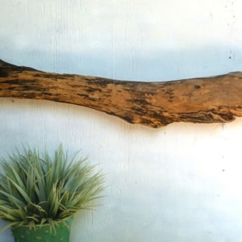 Decorative Driftwood, Wall Art, Brown From Divinedriftwood On With Fashionable Large Driftwood Wall Art (View 2 of 15)