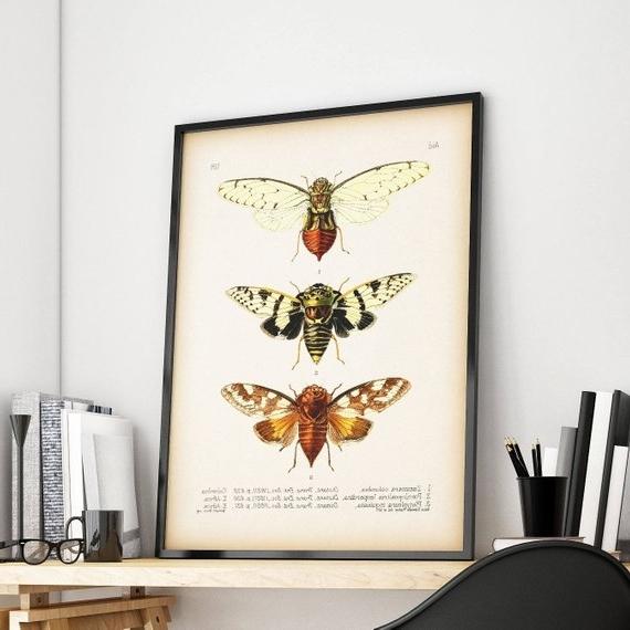 Entomology Print Cicada Print Cicada Art Insect Wall Art (View 5 of 15)
